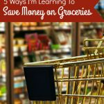 5 Ways I'm Learning to Save Money on Groceries