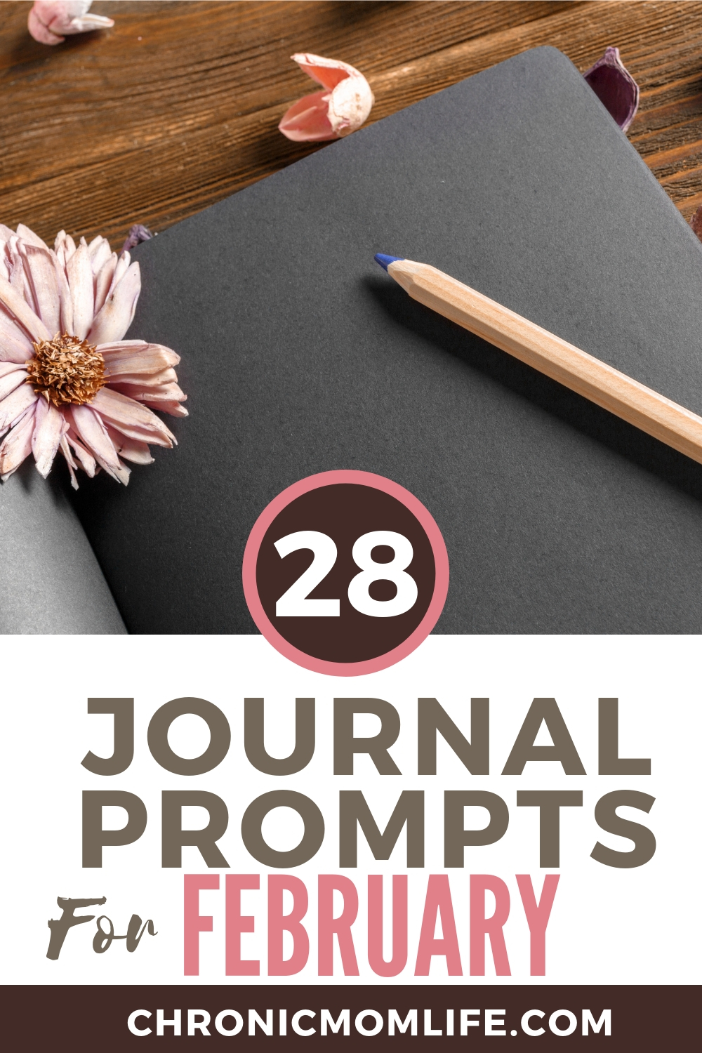 Start a journal practice with February Journal Prompts #journaling #selfcare