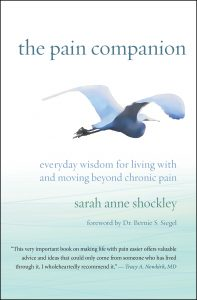 The Pain Companion Review